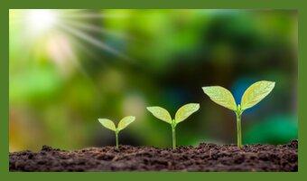 7 nützliche Tipps für Wachstum im Side-Business
